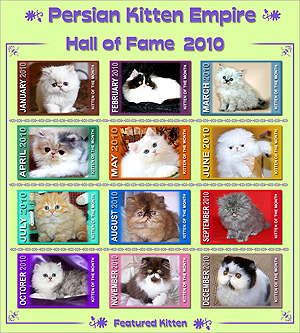 Hall of Fame 2010 - Click HERE