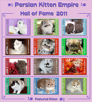 Hall of Fame 2011 - Click HERE